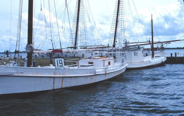 The ROSIE PARKS is a Maryland Skipjack Picture