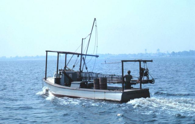 A Chesapeake Bay clam dredge boat. Picture