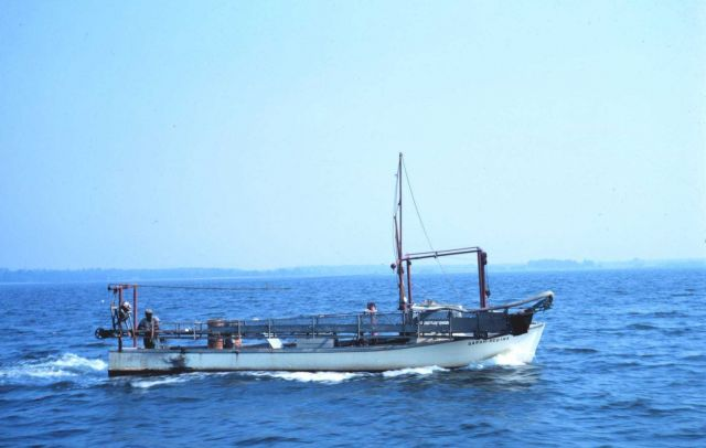 A Chesapeake Bay clam dredge boat underway. Picture