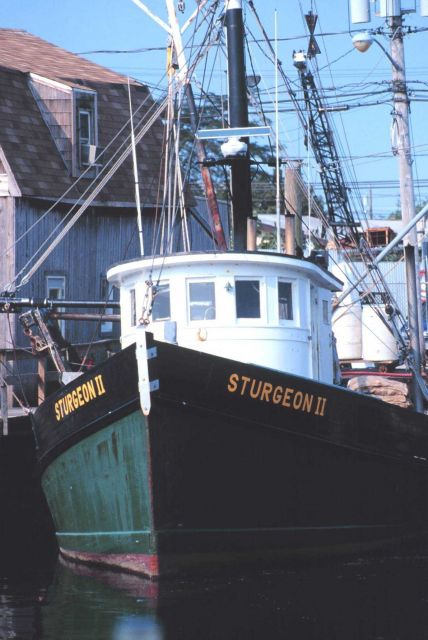 The clam boat F/V STURGEON II on Woodcliff Canal Picture