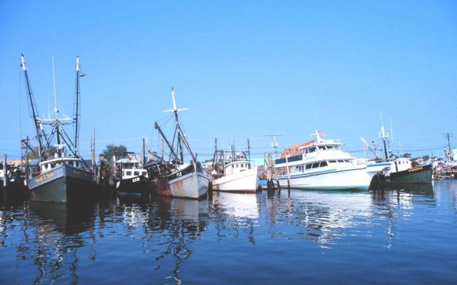 Commercial clam and recreational fishing boats on the Woodcliff Canal Picture