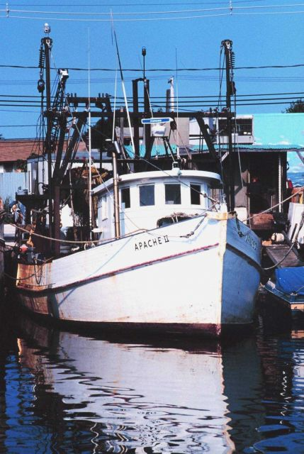 The clam boat F/V APACHE II on Woodcliff Canal Picture