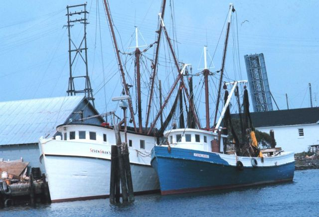 Shrimp boats at the pier Picture