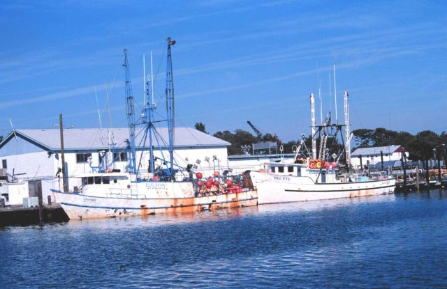 Set line fishing vessels Picture