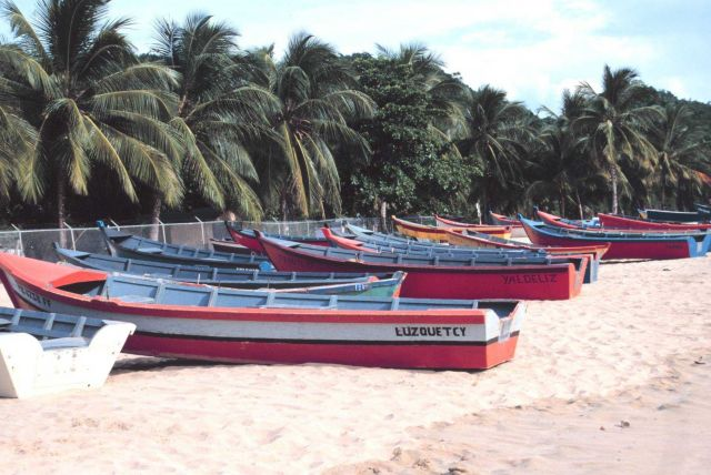 Part of the fleet of small sturdy fishing boats that operate from the beach Picture