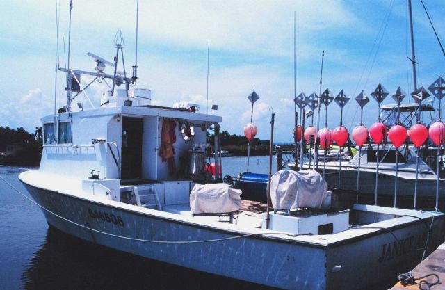 F/V JANICE ANN fishes for swordfish Picture