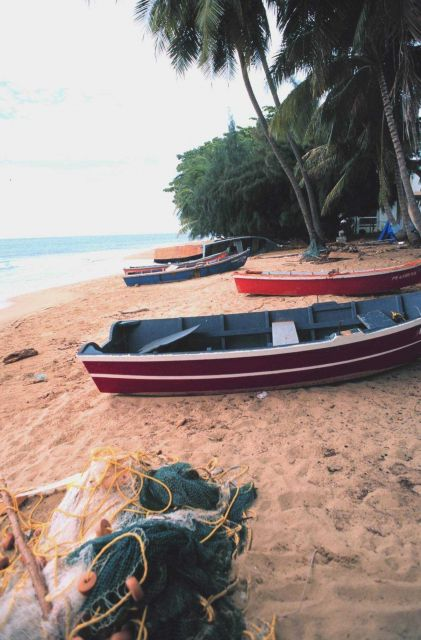 Small scale fishing boats on the beach Picture