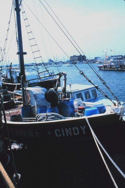Lobster are caught in the channel just beyond the F/V SANDRA&CINDY Picture