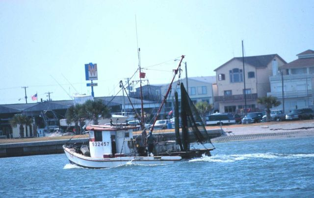 A shrimp boat heads out for the fishing grounds Picture