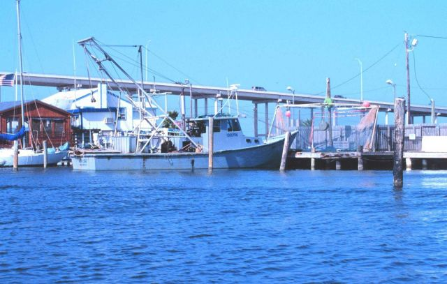 Shrimp boats tied up on the Padre island side of the JFK Causeway Picture