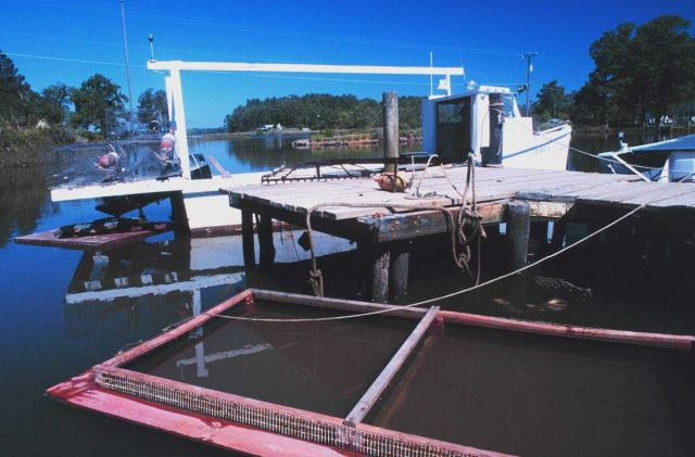 A blue crab boat and crab holding pens at Fleet's Island Picture