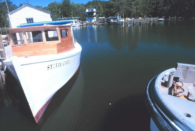 Small Chesapeake Bay waterman's boat at the pier Picture