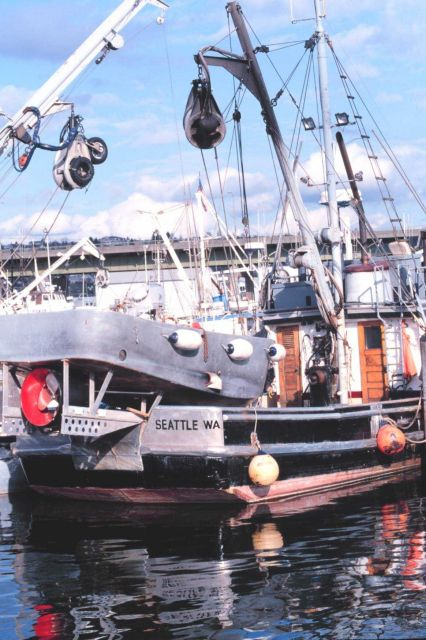 Fishing vessels at Fishermen's Port Picture
