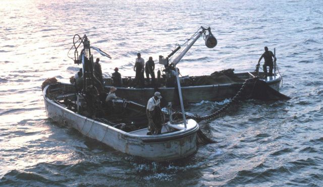 Menhaden fishing - Getting ready to set the net early in the morning Picture