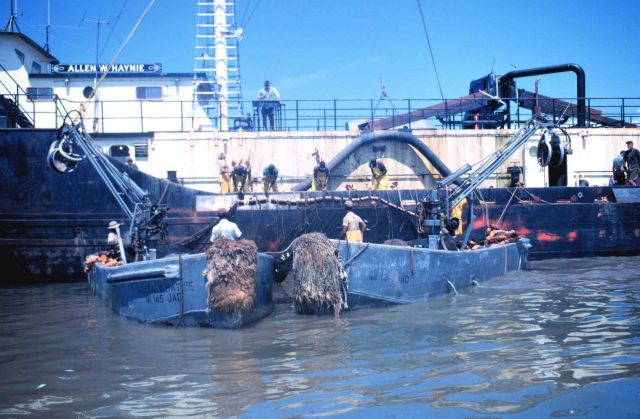 Menhaden fishing - mother vessel coming near to pump menhaden from closed purse Picture
