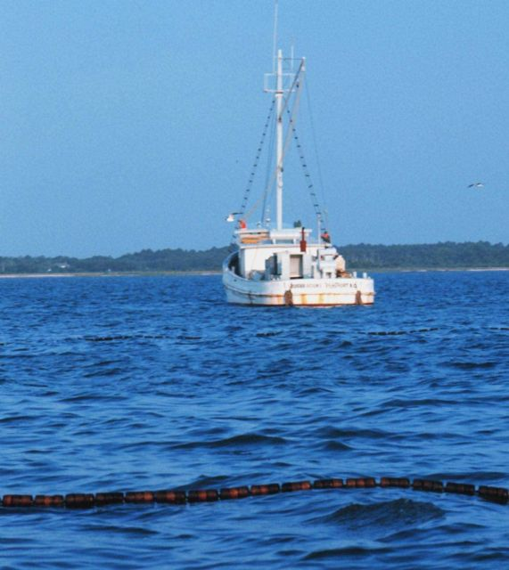 Menhaden fishing - mother vessel as seen over the floats on the net Picture