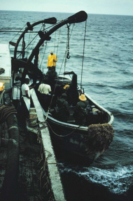 Menhaden fishing - port purse seiner boat being launched at daybreak Picture