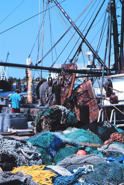 Fish nets, floats, and fishing boats at Co-op Seafood dock Picture