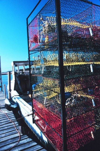 Blue crab fishing boats loaded with traps for the day's work Picture