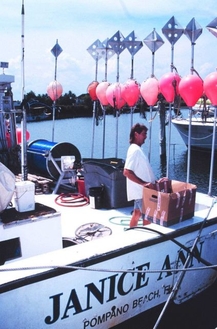 Floats and radar reflectors for recovery of longlines used by sword fishing boat JANICE ANN. Picture