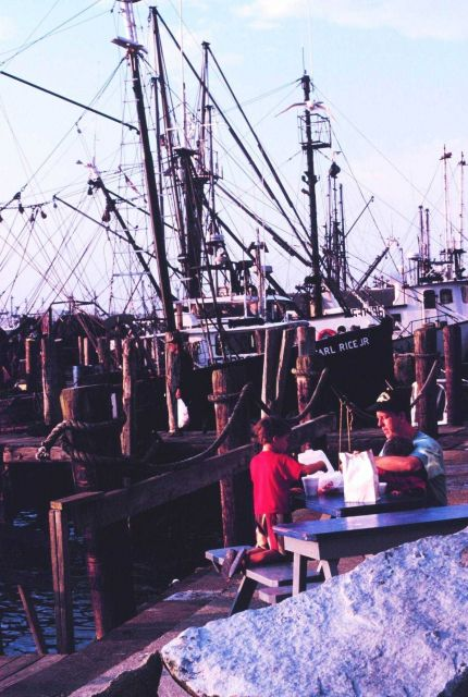 Dining out - a family dinner next to the Point Judith lobster boats Picture