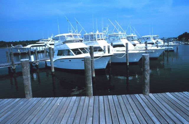 Recreational fishing boats at the Mystic River Marina Picture