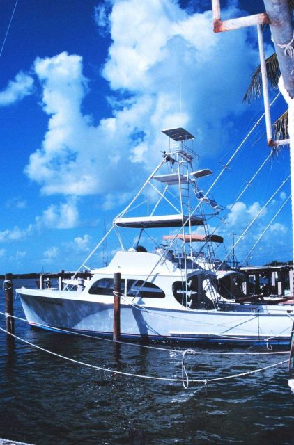 A trim recreational fishing craft tied up at Bud N' Mary's Marina Picture