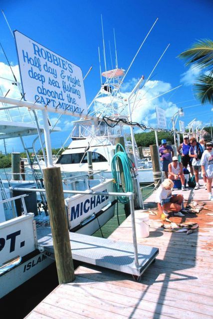 Unloading and distributing a catch of yellowtail snapper Picture