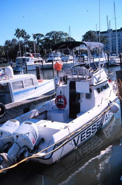 A yacht basin with a municipal vessel assistance craft. Picture