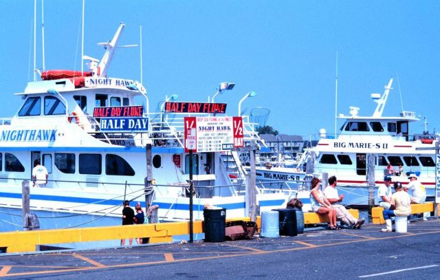Recreational fishing headboats at Belmar Marina offer day trips Picture