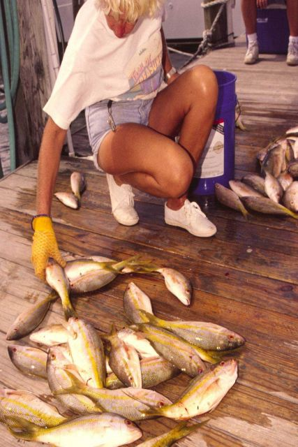 A crew member divides the day's yellowtail snapper catch taken on an Islamorada, Florida, charter boat. Picture