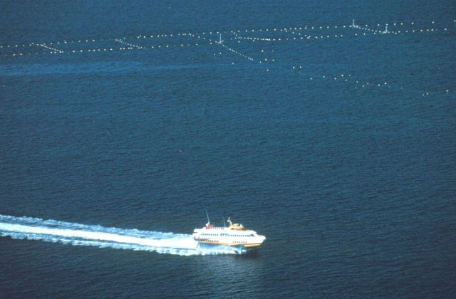 A bird's eye view of a passing hydrofoil and most of the netting complex Picture