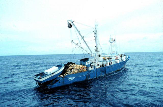 The Spanish tuna purse seiner F/V TXORI-EDER in the western Indian Ocean Picture