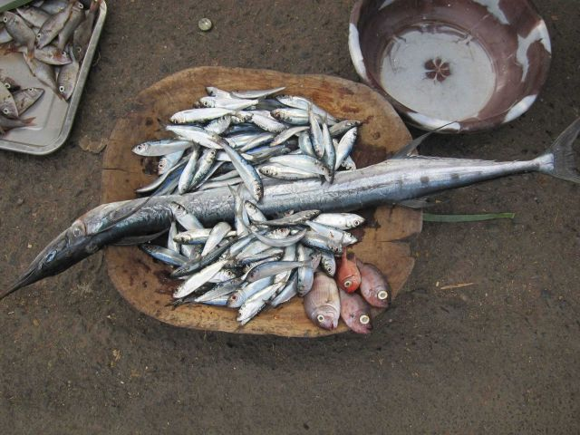 Fish for sale at Sao Tomean street market Picture