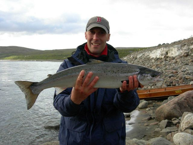 An adult Atlantic salmon from one of the world's most productive rivers, the River Teno in northern Norway. Picture