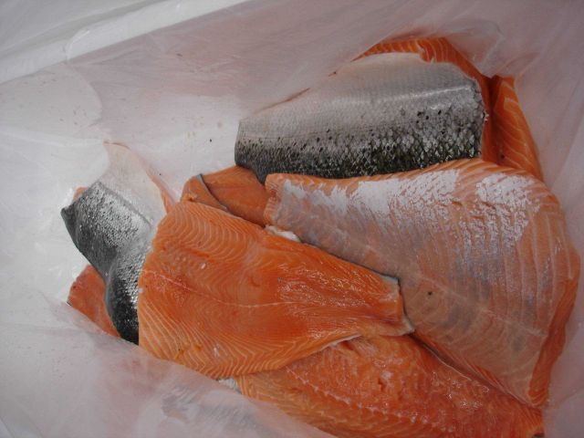 Salmon fillets. Picture