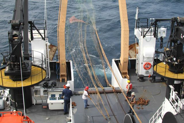 Deploying Aleutian wing trawl on sperm whale predation survey. Picture