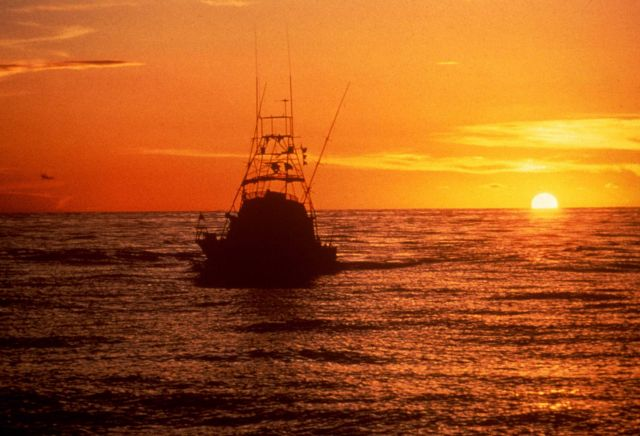 Sport fishing boat returning to port at sunset. Picture