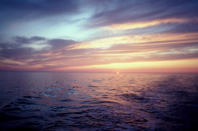 Sunset on the Gulf of Mexico Picture