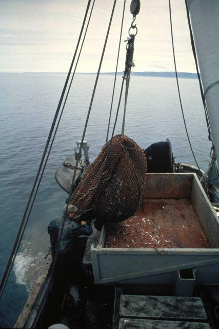 Shrimp boat in Alaskan waters. Picture