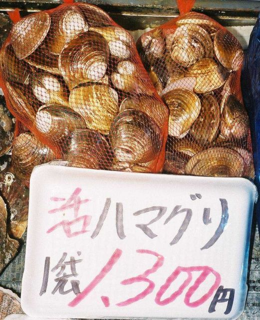 Clams, Mactra chinensis, for sale at the Shiogama market in Japan. Picture