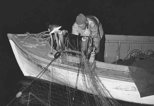 Small boat salmon gill net operations. Picture