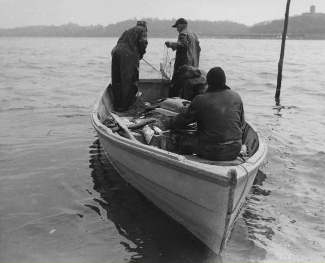 Small boat used in shad fishery - outboard amidships forward to facilitate hauling net over stern. Picture