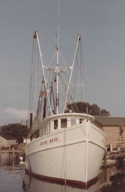 Shrimp boats Picture