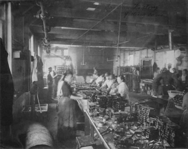 Sardine factory, filling cans. Picture