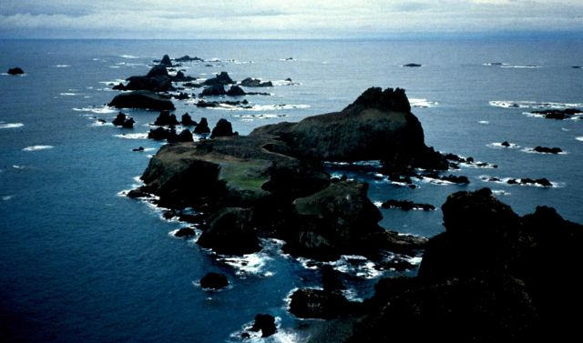 A cliffside penguin colony in the South Shetland Islands. Picture