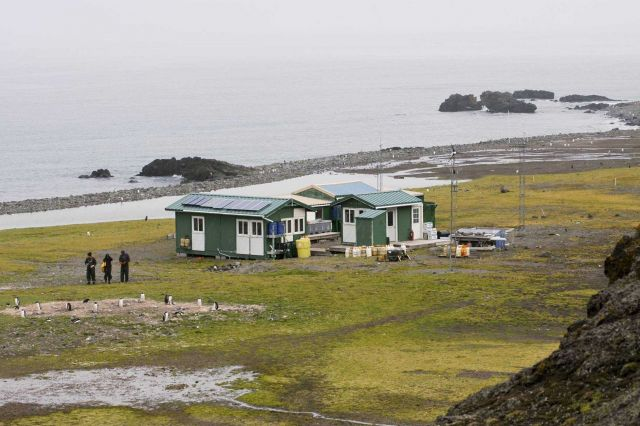A group of scientists takes photos of gentoo penguins in front of Copacabana field camp. Picture