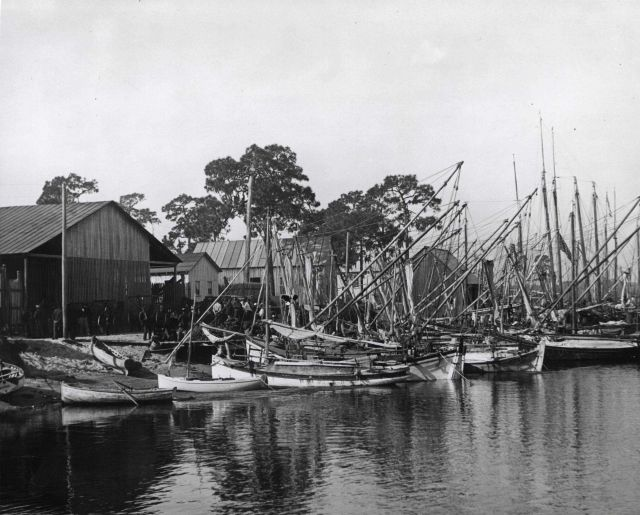 Sponge fishing boats along Florida Gulf Coast Picture