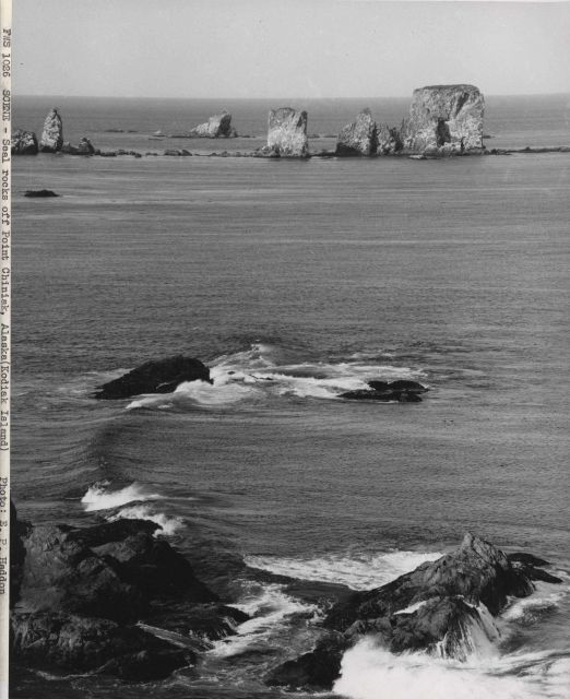 Seal rocks off Point Chiniak Picture