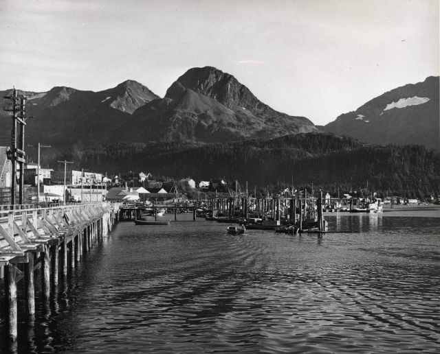 Cordova Commercial Fish Boat Harbor Picture